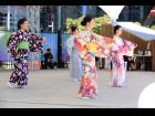 Japan Classical Dance Nihonbuyo Workshopmain